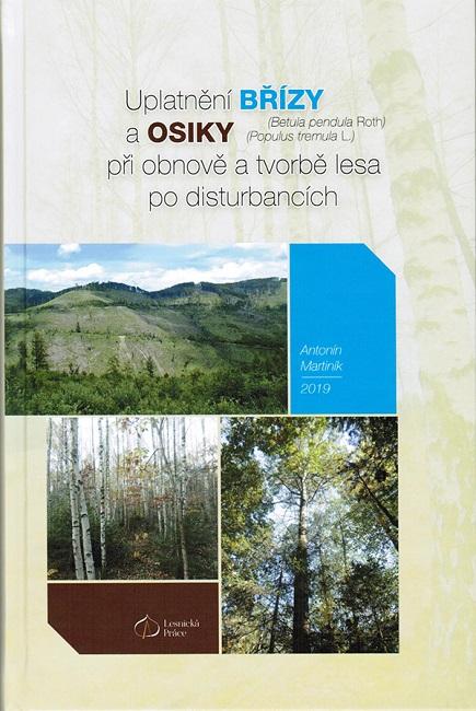 Uplatnění břízy a osiky při obnově a tvorbě lesa po disturbancích