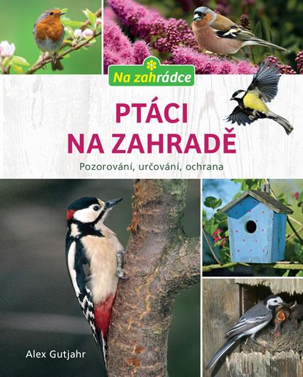 Ptáci na zahradě