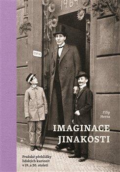 Imaginace jinakosti