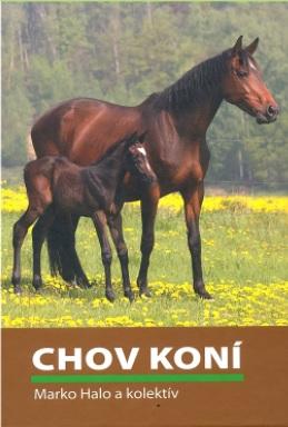 Chov koní -