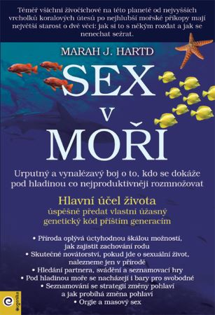 Sex v moři -