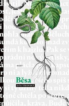 Běsa -