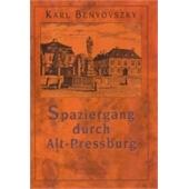 SPAZIERGANG DURCH ALT-PREESBURG